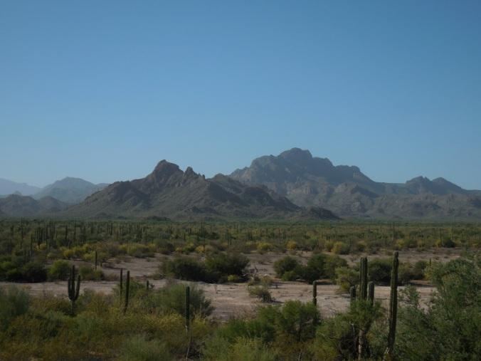 Mountain views 3