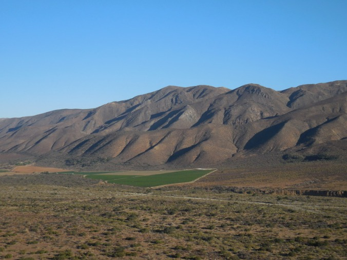 North Baja mountains in morning 1 (2)