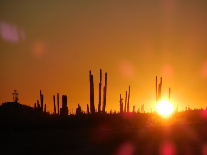 Sucuro Sunset 1
