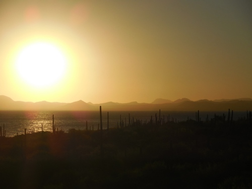 Sunrise on Conception Bay 6