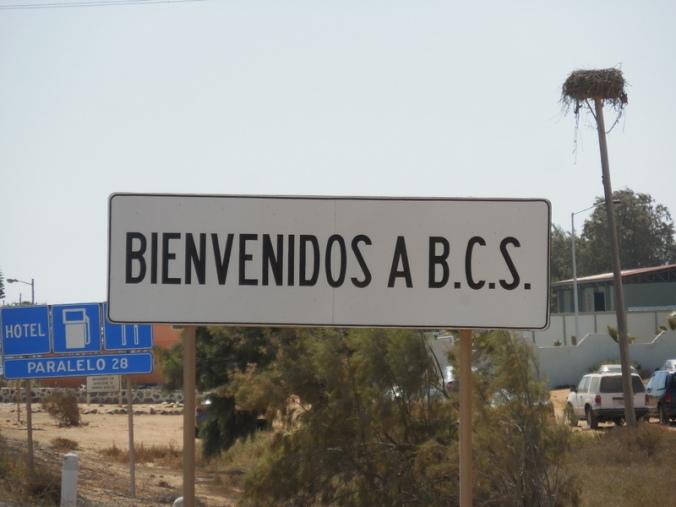 Welcome to Baja California South