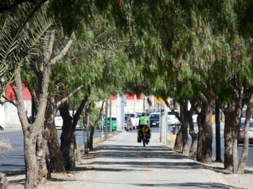 Bike path in Leon