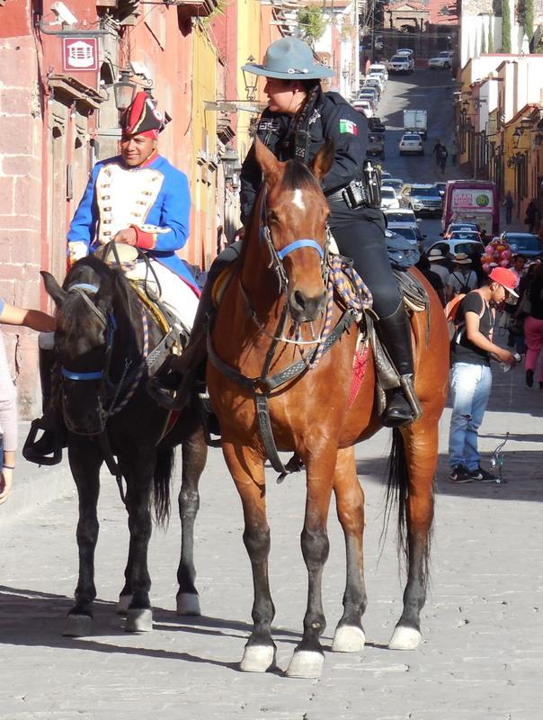 San Miguel de Allende horses