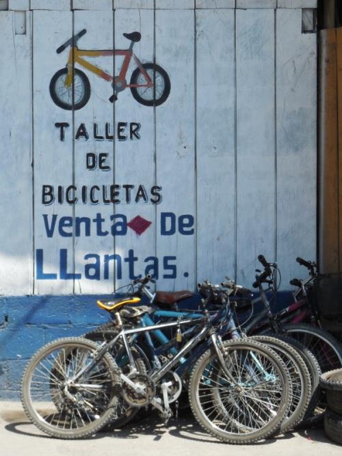 Bike shop in town