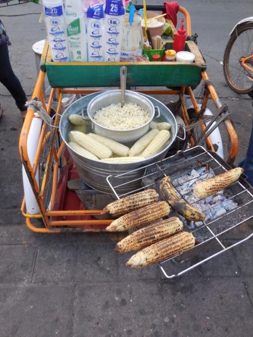 Corn in the park