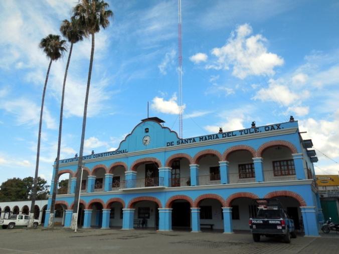 El Tule townhall