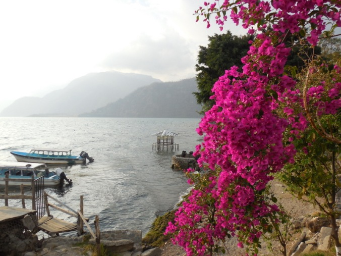 Lake and flowers