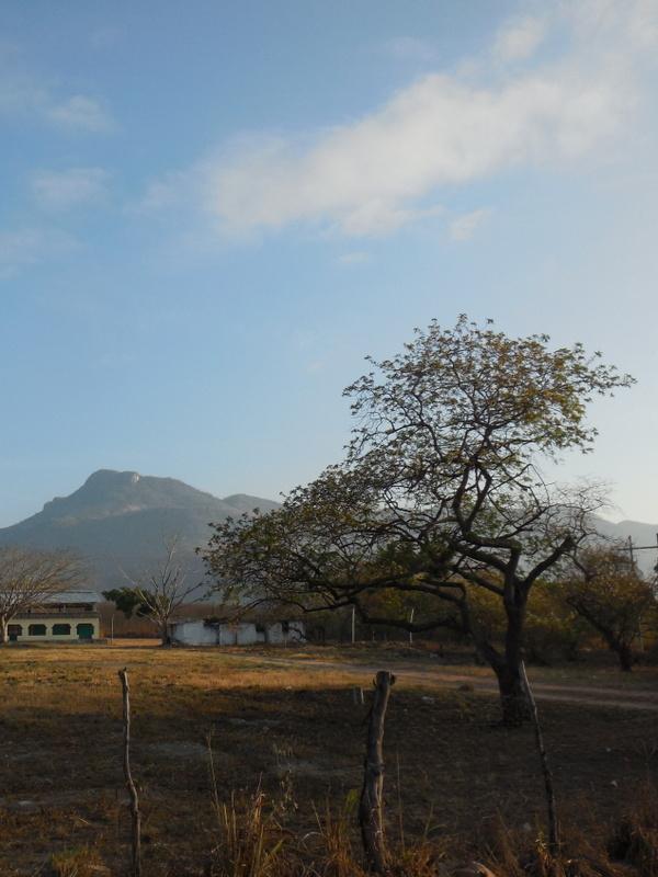 Morning Sierra Madres 2
