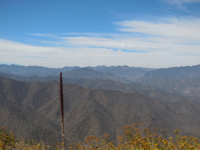 Near the top, riding the ridges