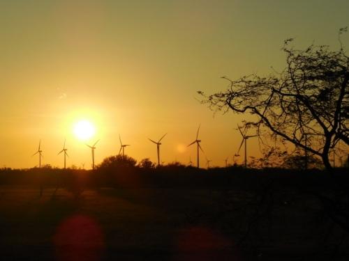 Sunrise this morning 5
