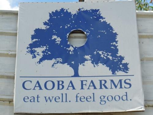 Caoba Farms 1