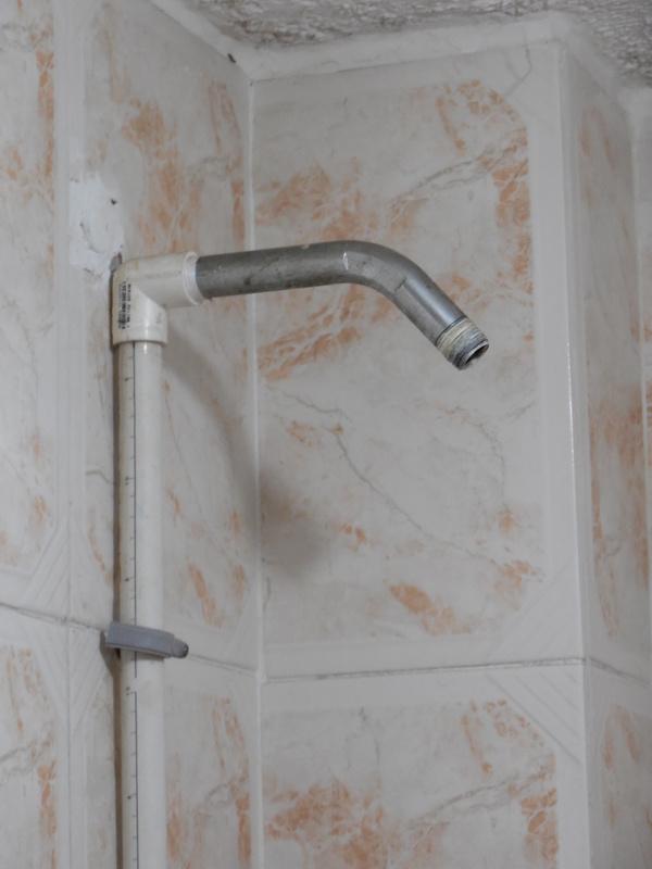 HP - shower head