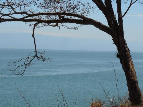 Nicoya Bay