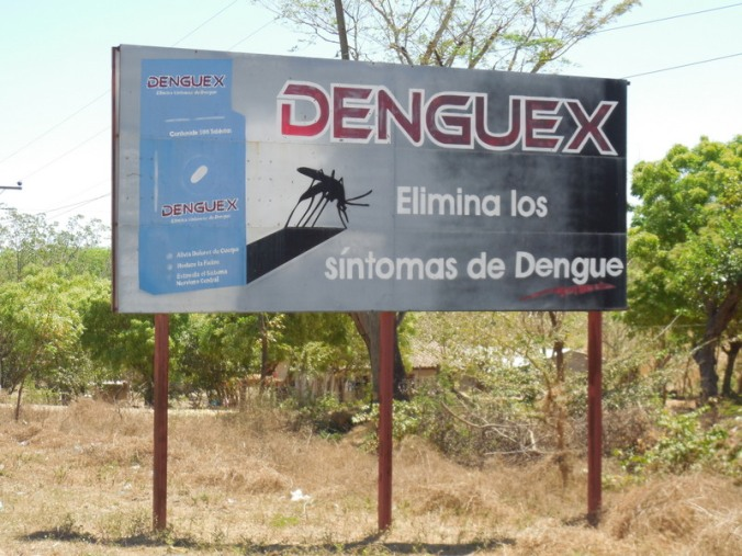 No Dengue please