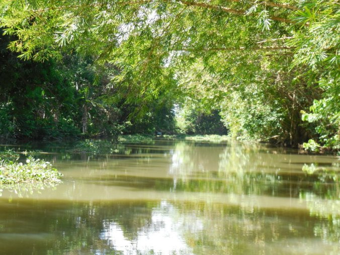 River view 5
