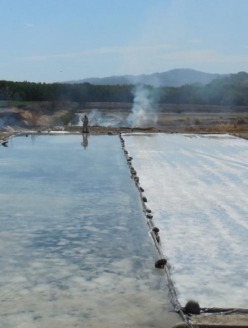 Salt farm 1