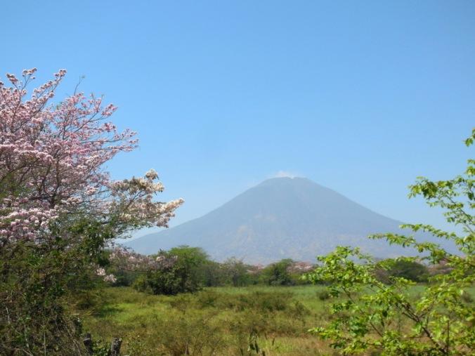 San Miguel Volcano 2