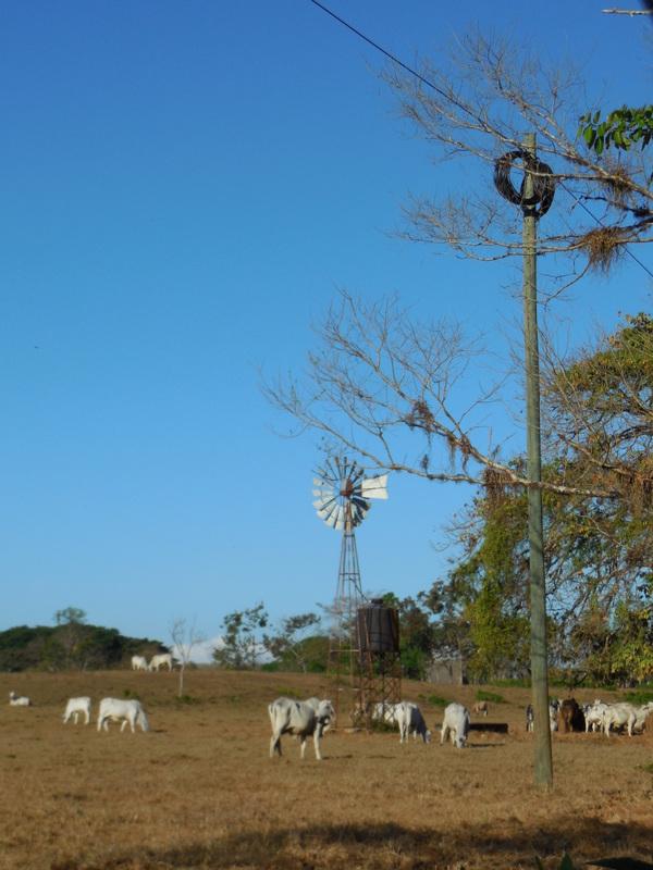 Scenic Panama 2