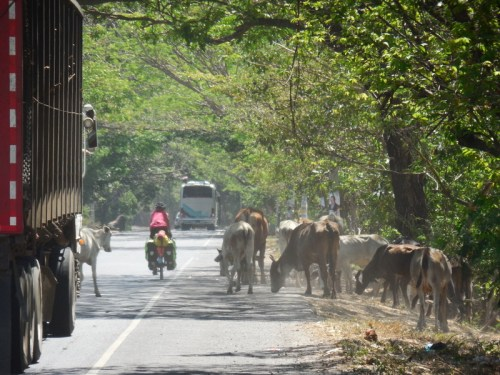 Traffic jam El Salvador style 2