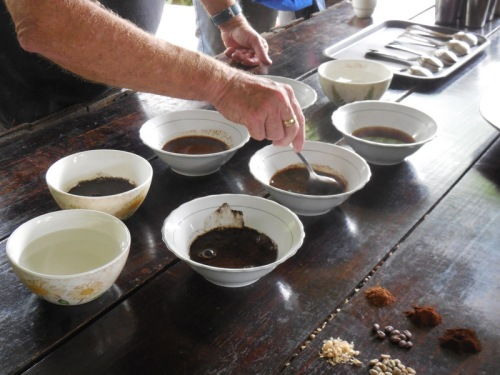 13 cupping - usea sppon to try out different coffee and roasts