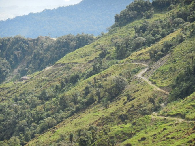 Andes backroad