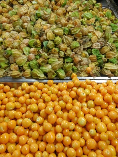 Fruit - Uchuva