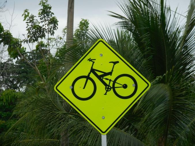 Super detailed bike warning - dual suspension