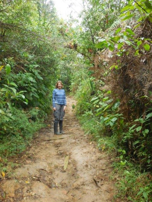 Trail mud