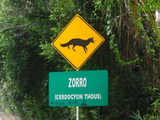 Zorro - fox sign 1
