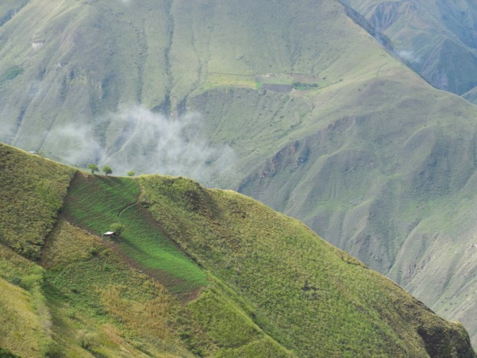 Andes view 7