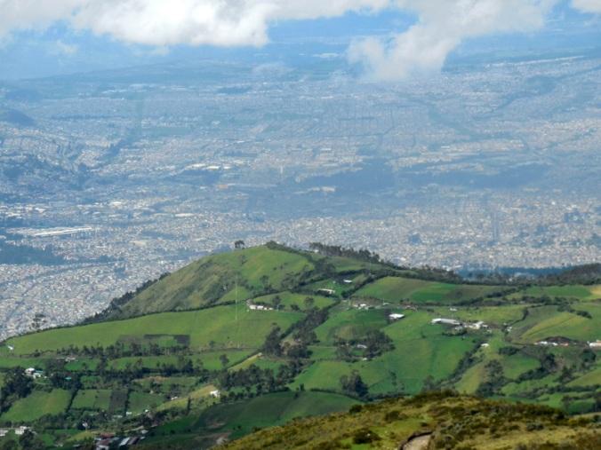 City view 5