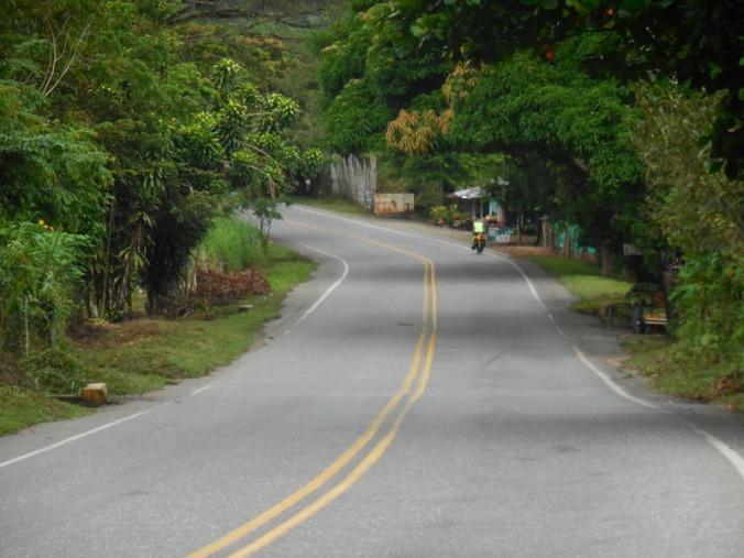 Morning roads