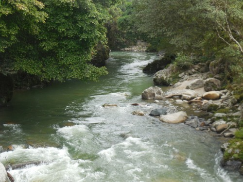 Andes river 2