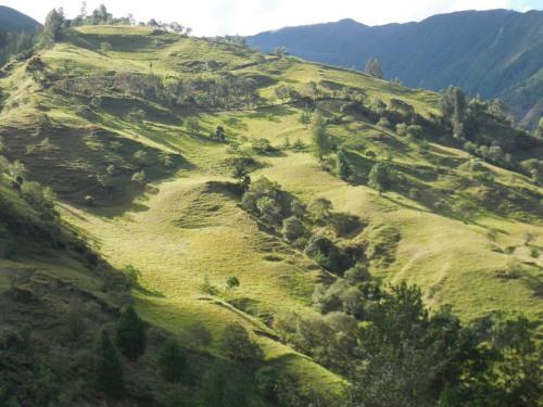 Andes views 1