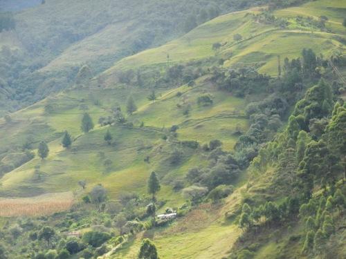 Andes views 2
