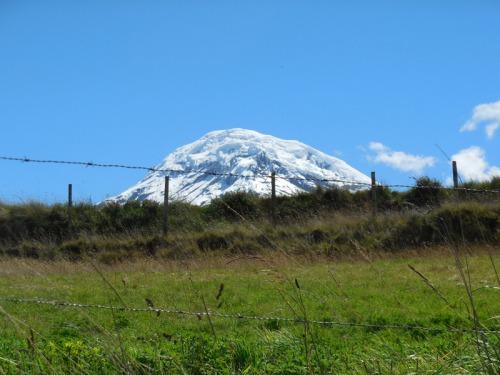 Chimborazo 6