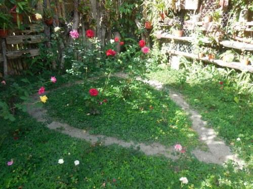 Hostal garden 1