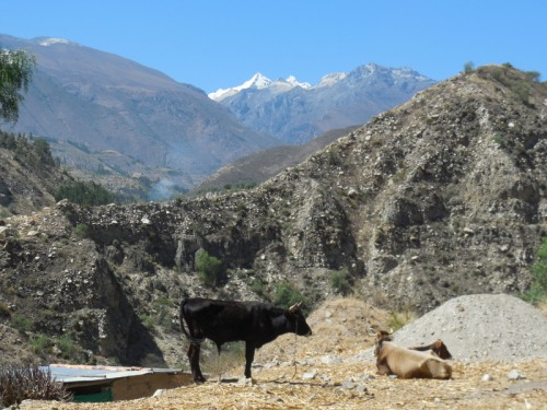 Cordillera Blanca Mountain view 4