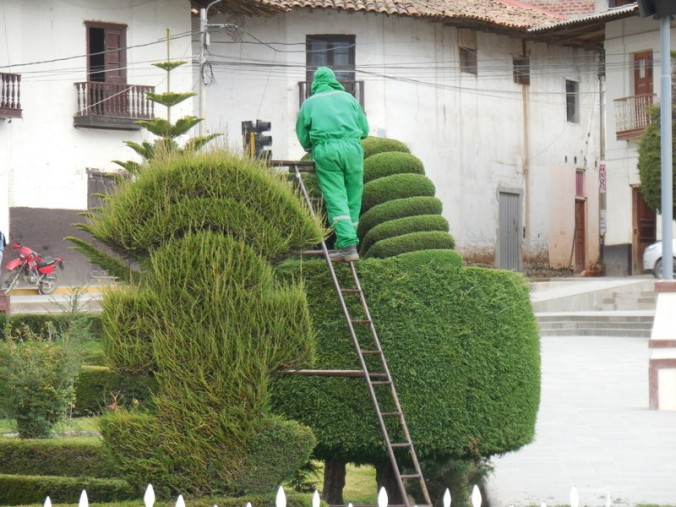 Huamachuco topiary 7