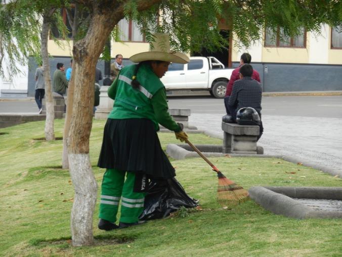 Park worker