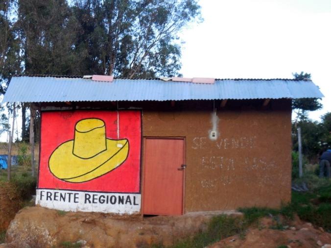 Political house paint 1