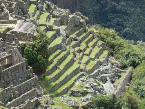 Machu Picchu terraces1