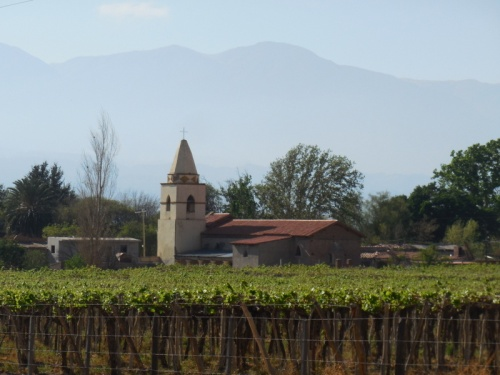 Church and vines - Tolombon