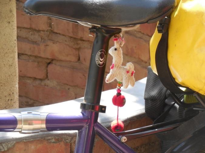 Nancy new bike icon