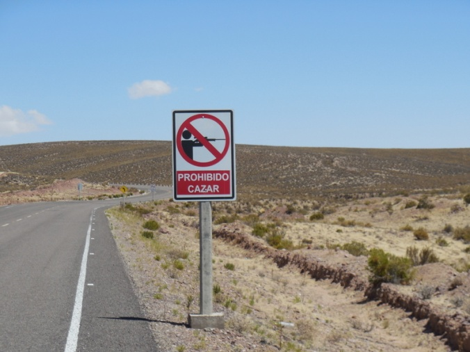 No shooting sign with no bullet holes - nice