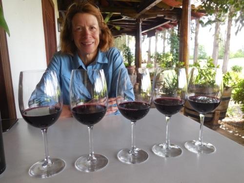 5 wines 1