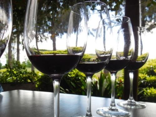 5 wines 2
