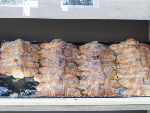 Bakery buns 1