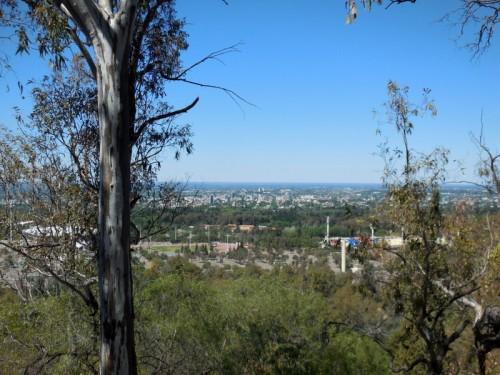 Mendoza view