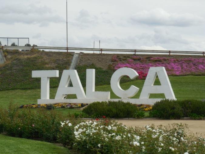 Talca, made it
